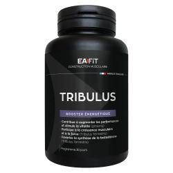 Tribulus Synthèse Testosterone 90 comprimés
