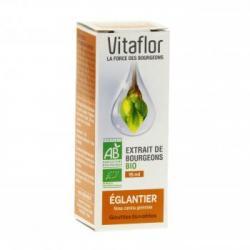 Eglantier 15ml