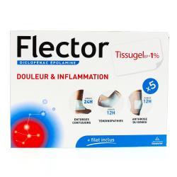 Flector tissugel EP 1 % Boîte de 5