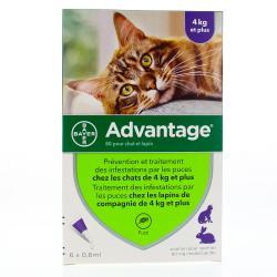 ADVANTAGE 40 pour chat et lapin Boîte de 1 plaquette thermoformée de 6 pipettes de 0,4 ml